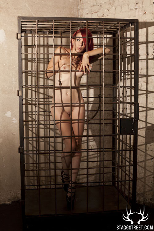 i got crash in a cage