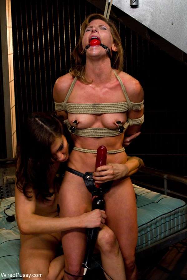 ariel x princess donna strap on the warden