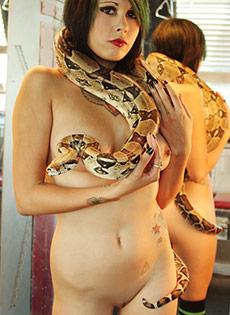 Blue Blood Barely Evil cute troublemakers  Scarlet Starr Snake in Eden